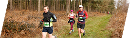 Thoresby 10 Runners