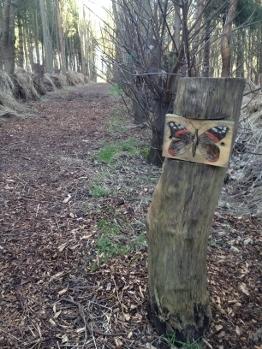 Eco Centre Trail run